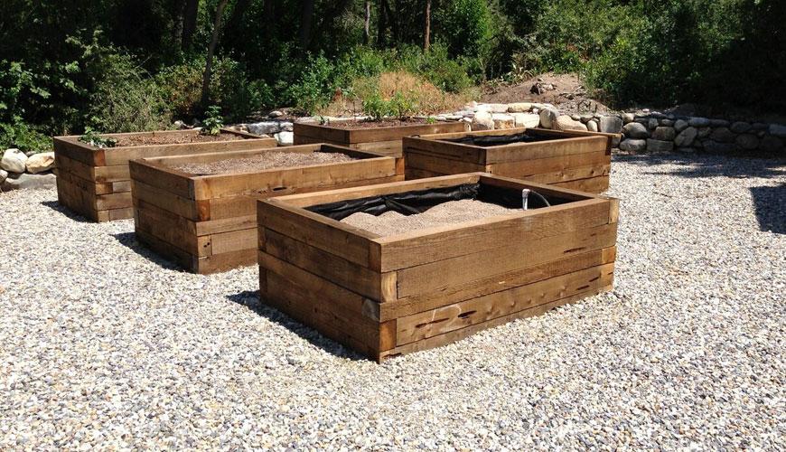 pecky cedar lumber