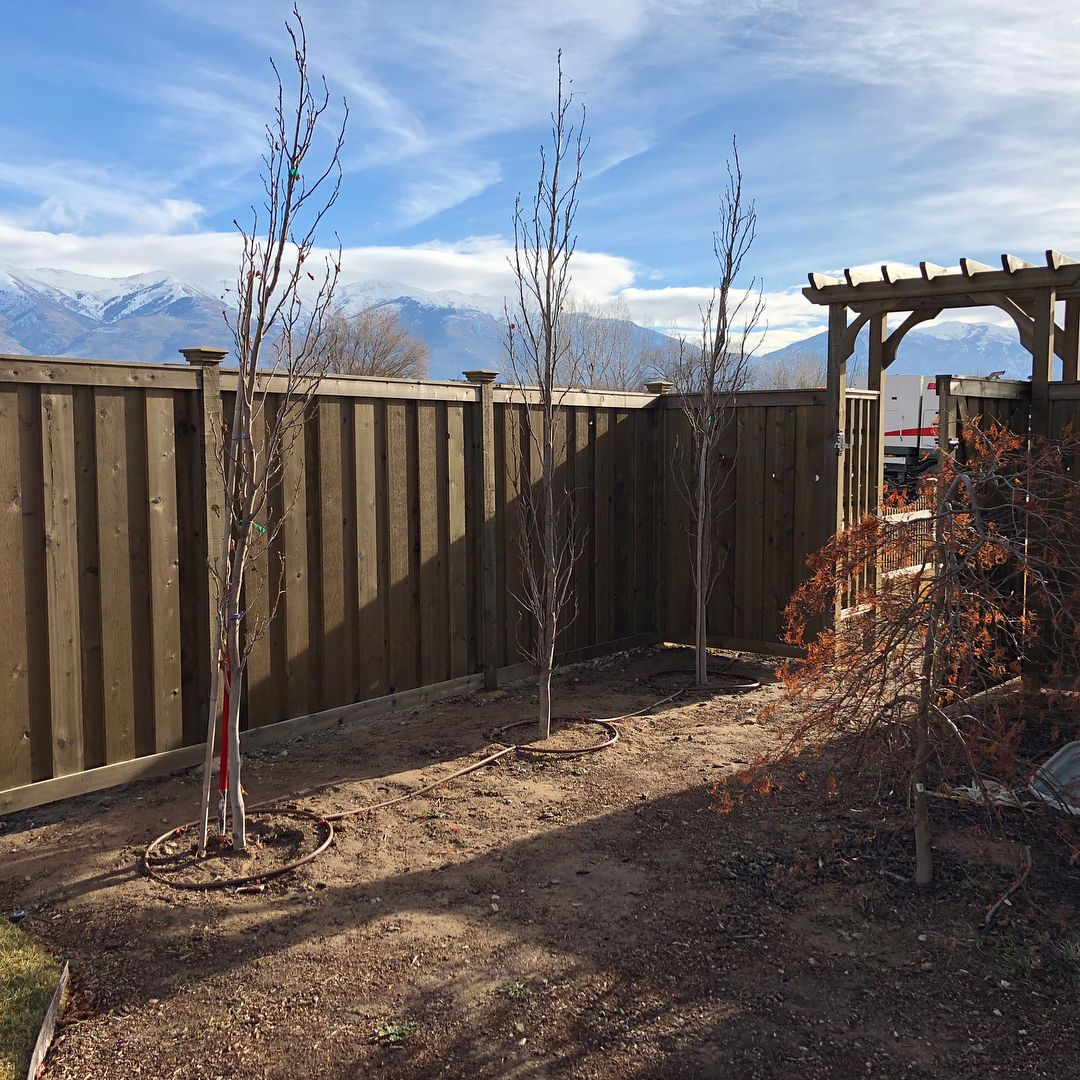 Here are some stress-free maintenance and care tips to keep your timber garden fences looking sleek and envied by your neighbors.