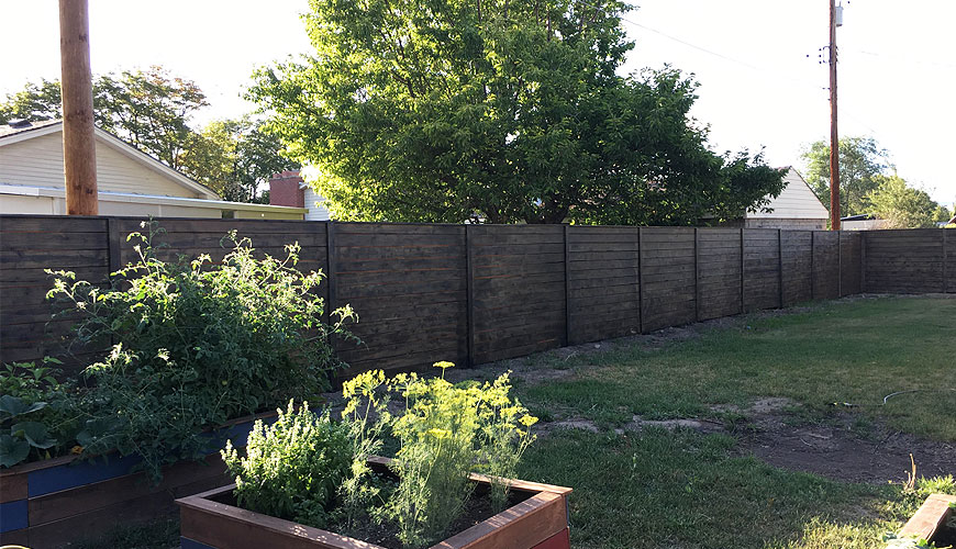 Cedar and Pine are among the most versatile options for any timber project. We'll look at their main differences to help you choose for your garden fencing.